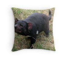 photoj Tas Wingfarm Park, Tassie Devil Throw Pillow
