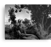 Sedona in Black & White Metal Print