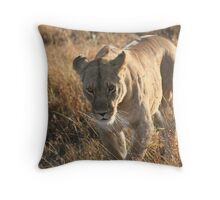 On the prowl. Throw Pillow