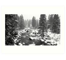 Blanket of snow Art Print