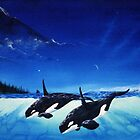 2 orca by Bornonahighway