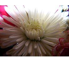 Beauty & Light Photographic Print
