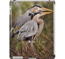 Nesting Pair - Great Blue Herons iPad Case/Skin