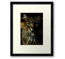 0185 - HDR Panorama - Tomcat Framed Print