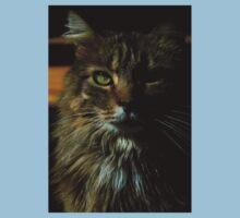 0185 - HDR Panorama - Tomcat Kids Tee