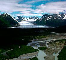 Glacial Melting by marcantony