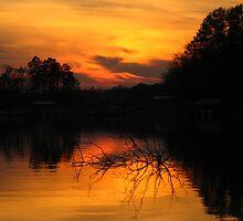 A Sunset at Clemson IV by Manas Karekar