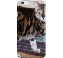 Ziggy sneaking out the back door. iPhone Case/Skin