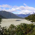 Haast NZ by miclile