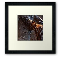 0256 - HDR Panorama - Broken Branch Framed Print