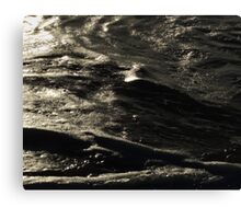 Day for night Canvas Print