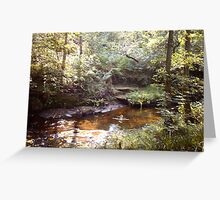 Forest glade Greeting Card