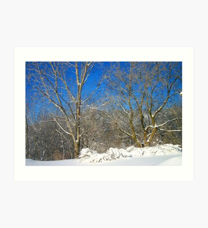 Blue Sky Winter Scene Art Print