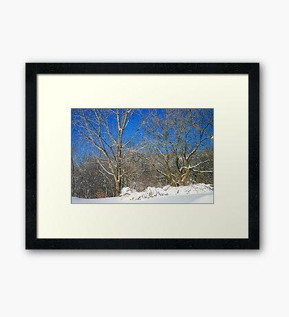 Blue Sky Winter Scene Framed Print