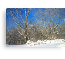 Blue Sky Winter Scene Metal Print