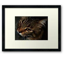 0331 - HDR Panorama - Tom Inquisitive Framed Print