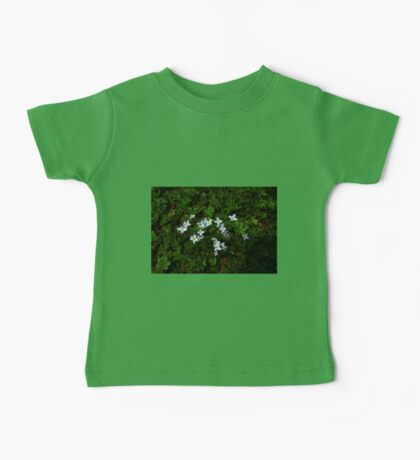 0334 - HDR Panorama - Ground Blooms Baby Tee