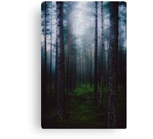 I will make you sleep Canvas Print