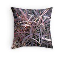 Ferocactus cylindraceus Throw Pillow