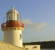 Youghal Lighthouse by Pauline Jones