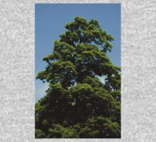 0350 - HDR Panorama - Tree One Piece - Long Sleeve
