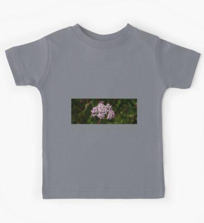 0372 - HDR Panorama - Flowers Kids Tee