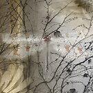 Antlion by Leah Highland