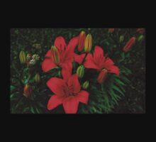 0375 - HDR Panorama - Lillies Baby Tee