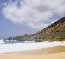 Sandy Beach Oahu  by kevin smith  skystudiohawaii
