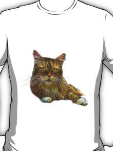 Maine Coon Cat - 3896 T-Shirt