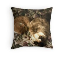 Arch Enemies Throw Pillow