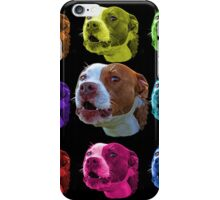 pitbull dog art 7769  iPhone Case/Skin