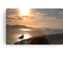 Dingle Peninsula, Co.Kerry, Ireland Metal Print