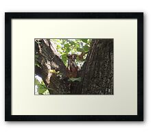 Showcasing a Leaf Costume Framed Print