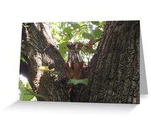 Showcasing a Leaf Costume Greeting Card
