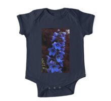 0439 - HDR Panorama - Flowers One Piece - Short Sleeve