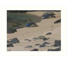 Sea turtles of Na Pali Coast Art Print