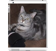 Loki - Canon Spokescat. iPad Case/Skin
