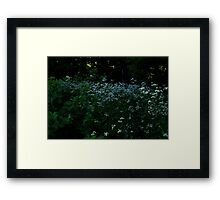 0451 - HDR Panorama - Smattering Blooms Framed Print