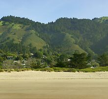 Stinson Beach by Brian C. Racine
