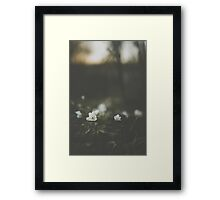 Untouched I Framed Print