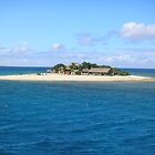 fiji island by discodave