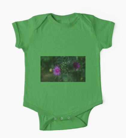 0477 - HDR Panorama - Thistles One Piece - Short Sleeve