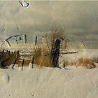 Snow & Sand by Greta  McLaughlin