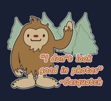 Sasquatch photo. by Faramiro