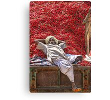 Hot Bed! Canvas Print