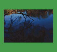 0534 - HDR Panorama - Undertow Baby Tee