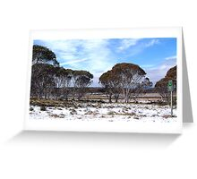 Cooma 100 - Snowy Mountains National Park,NSW Australia Greeting Card