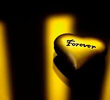 Forever Love by mrjboyle