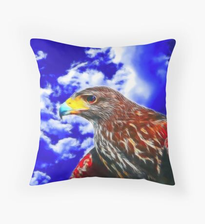Eyes of a Hawk 2 Throw Pillow